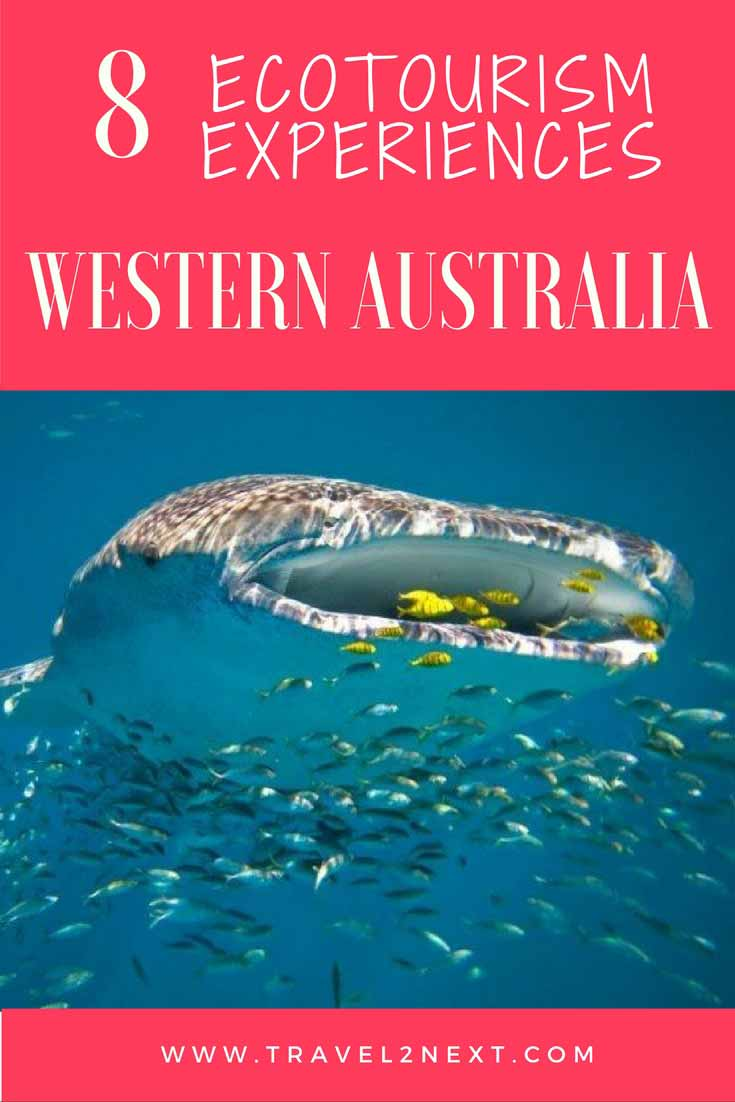 8 Ecotourism Experiences in WA