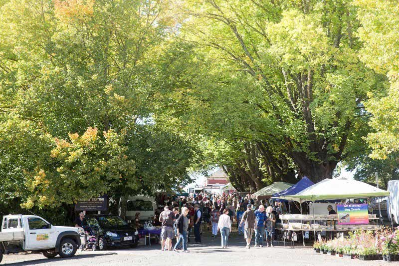 things to do in daylesford