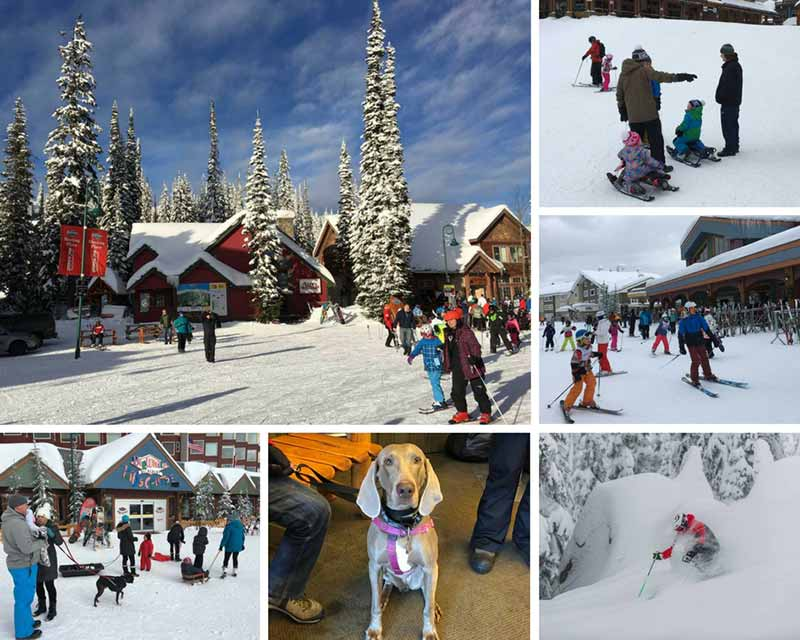 skiing big white is great for families